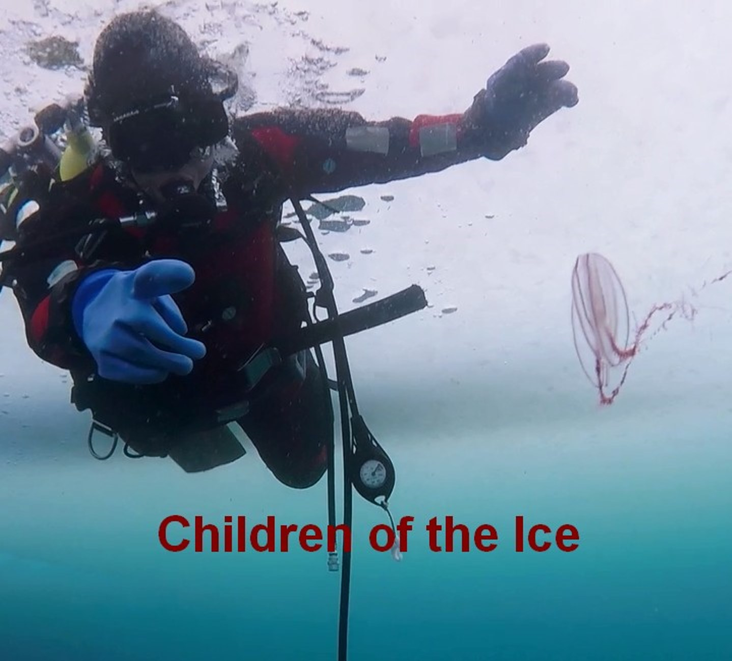 Children from the Children's Home diving with 'Under the Pole'